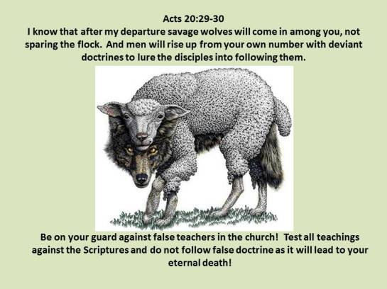Acts 20.29-30